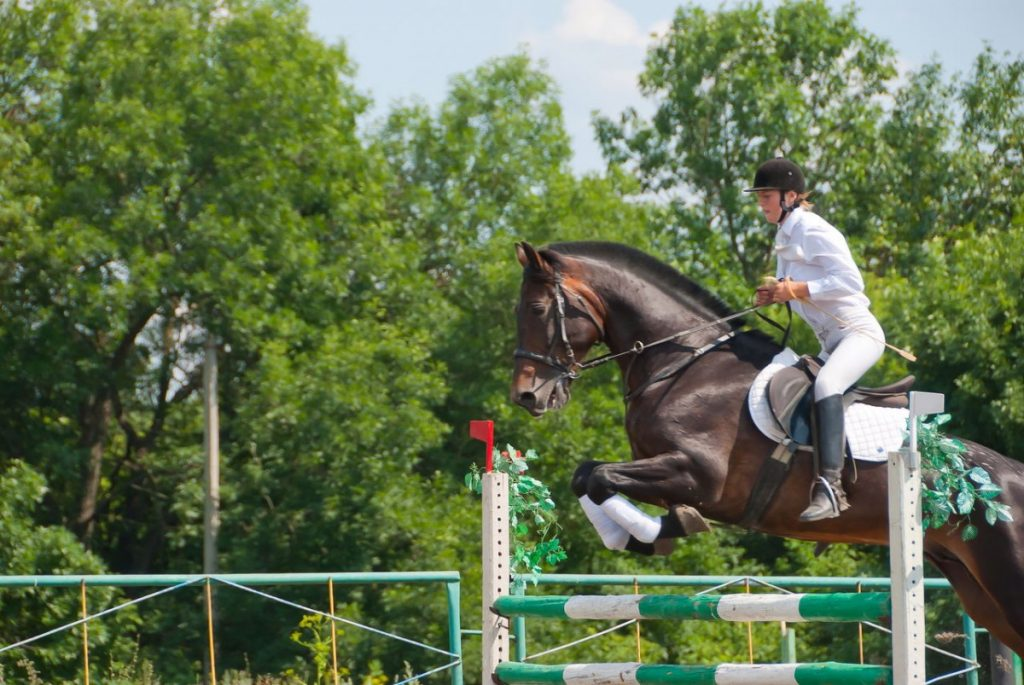 jockey-jumping-over-hurdle_Easy-Resize.com_-1024x685