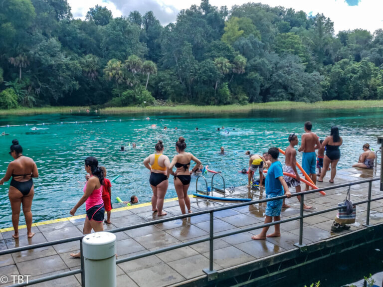 swimmers looking at the rainbow river in dunnellon florida